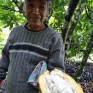 House of Anvers Maranon Cacao beans direct from farmer